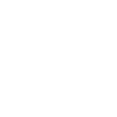 ICON direct deposit WHITE